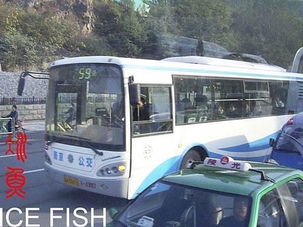 南京公交59路