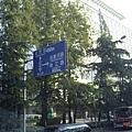 南京市北京東路-T字路口圖形路標