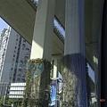 上海市-延安高架橋下