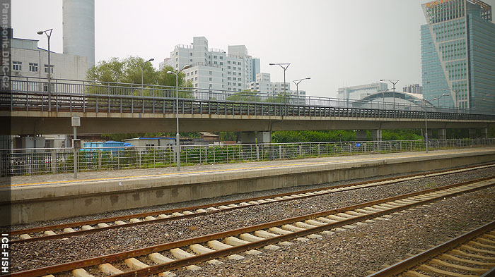 P1150926