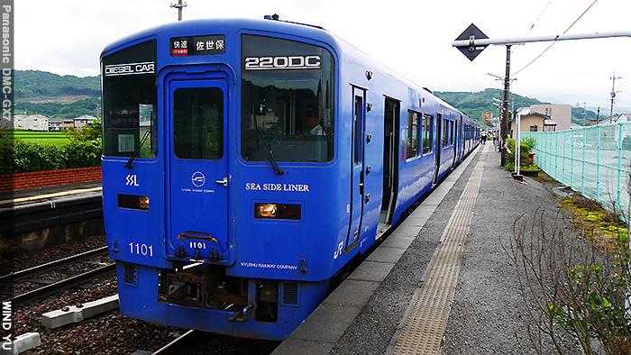 P1310079.JPG