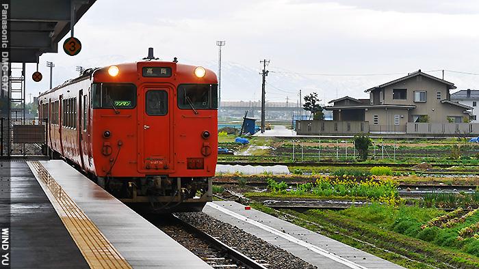 高P1430142.JPG