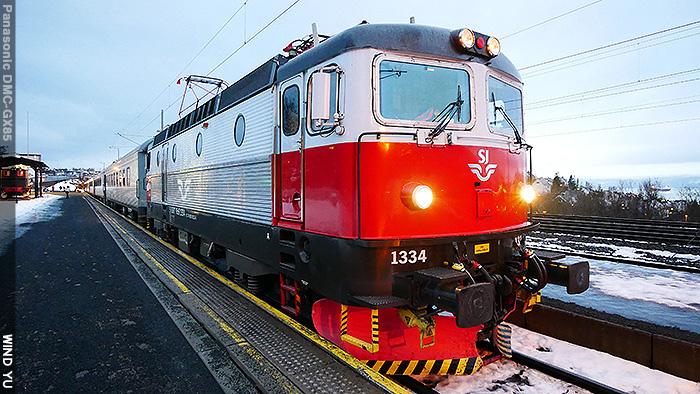 P1100850.JPG