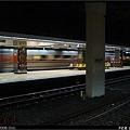 P1130954.jpg