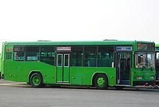 P1260336 -  複製.JPG