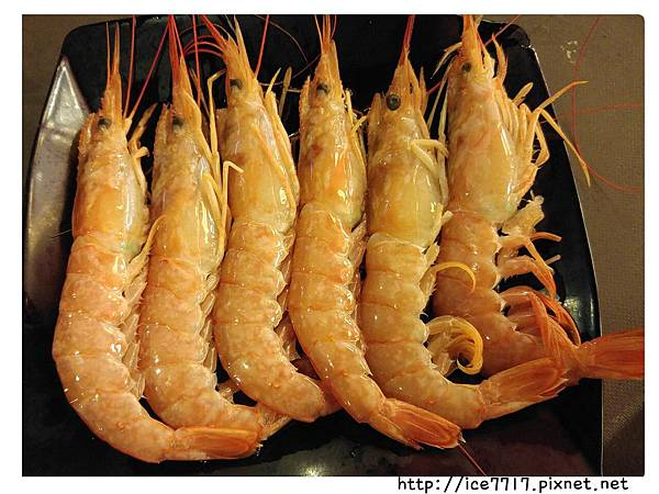 阿根廷天使紅蝦.jpg