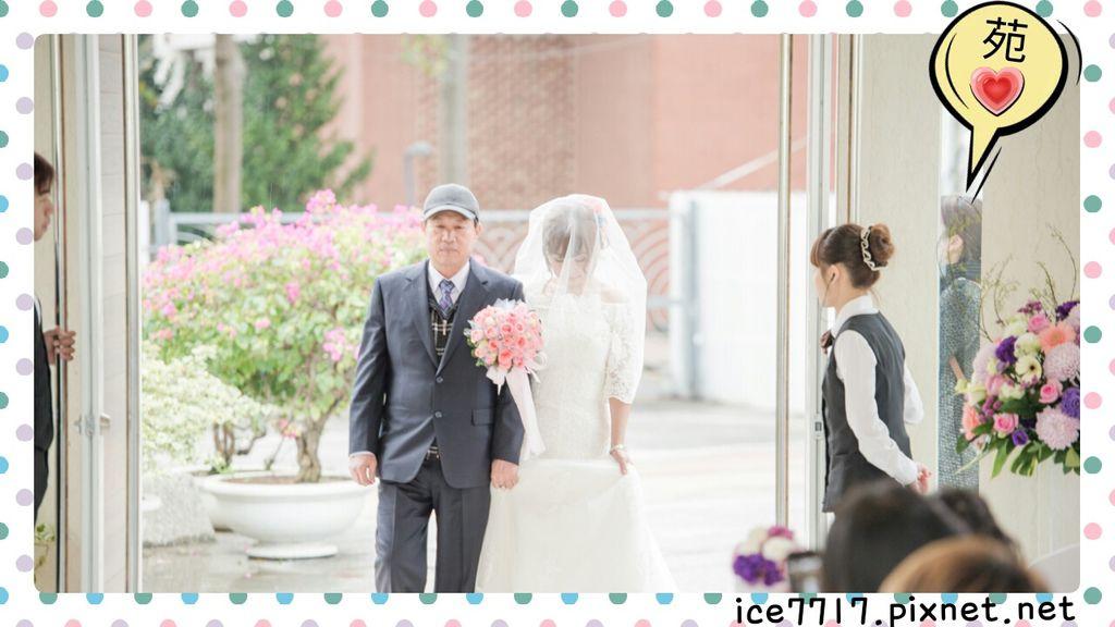 苑苑無時無刻跟著-證婚進堂.jpg