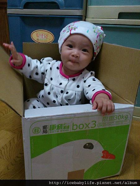 kids tokei 報名照片