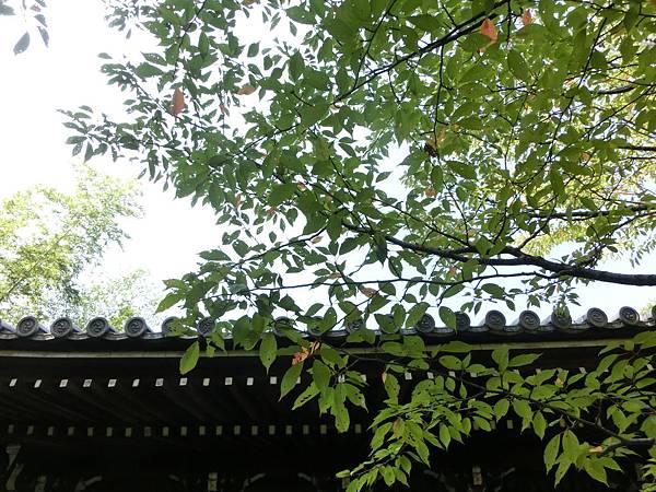 0930-1 南禪寺 (66)