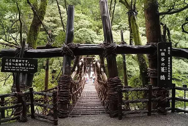 祖谷蔓橋 (7)