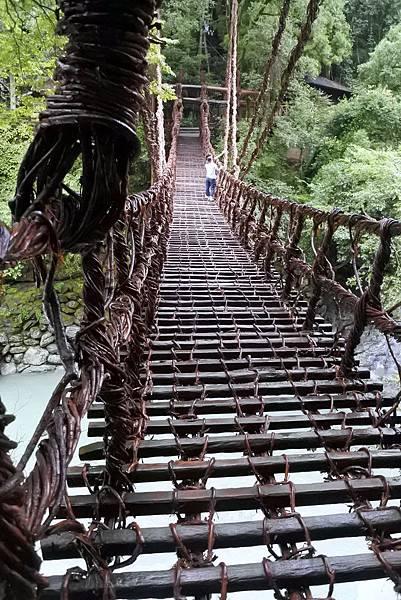 祖谷蔓橋 (5)