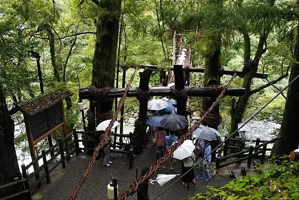祖谷蔓橋 (3)