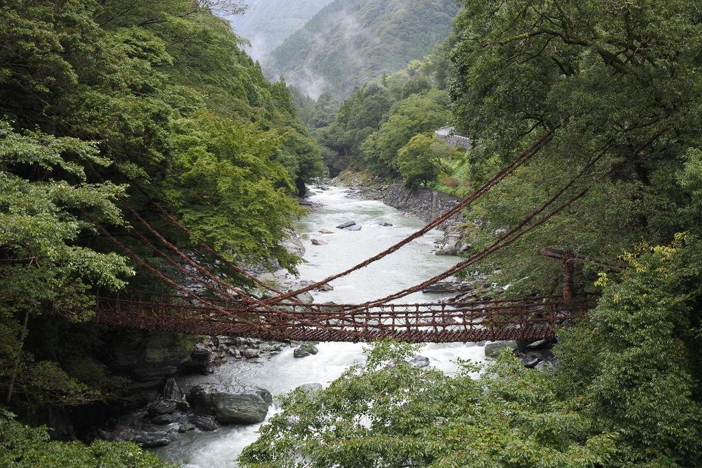 祖谷蔓橋 (2)
