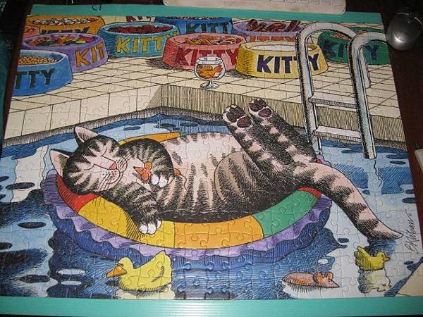 2011.07.01 300 pcs Pool Cat (16).jpg