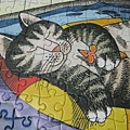 2011.07.01 300 pcs Pool Cat (22).jpg