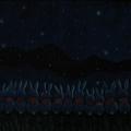 2011.10.10 1000 pcs 兔兔排排坐 (11).JPG
