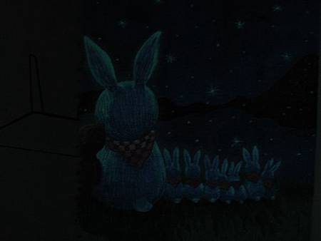2011.10.10 1000 pcs 兔兔排排坐 (12).JPG