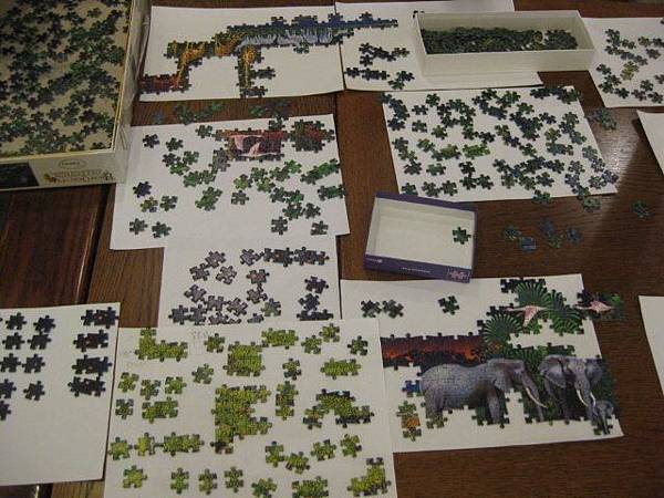 2011.10.23 2000 pcs Animal Jungle (5).jpg