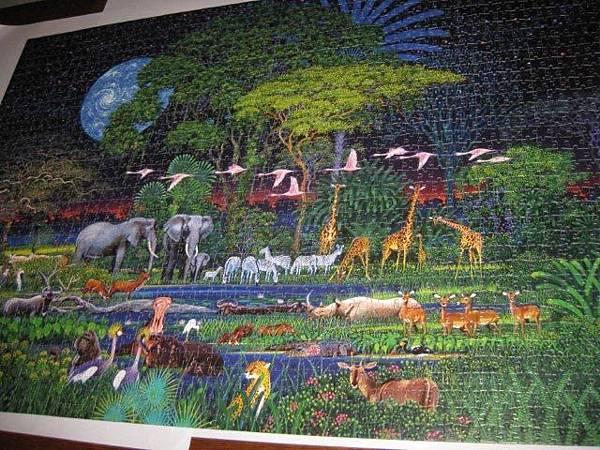 2011.10.23 2000 pcs Animal Jungle (17).jpg