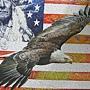 2011.12.10-11 750 pcs Spirit of America (7).JPG