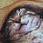 2012.03.28 500 pcs Sweet Dreams (5)