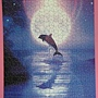 2012.05.18 500P Dolphin by the Moonlight (3)