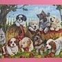 2012.06.14 500P Playful Pups (6)