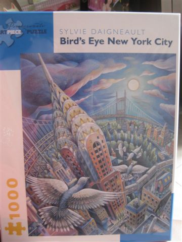 2012.07.07 1000P Bird's Eye New York City.jpg.JPG