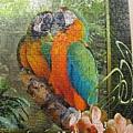 2012.08.17 1000P Cozy Macaws (9)