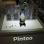 2012.09.28 Pintoo 中山店 (2)