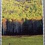2013.01.11-12 1000P 新疆禾木 Hemu Village, Xinjiang (5).jpg