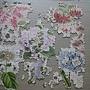 2013.03.04-05 1000P Royal Botanic Gardens KEW (3).JPG