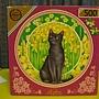 20136.03.19-20 500P Black Cat (1)