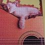 2013.05.15 500P 我的吉他 (2).jpg