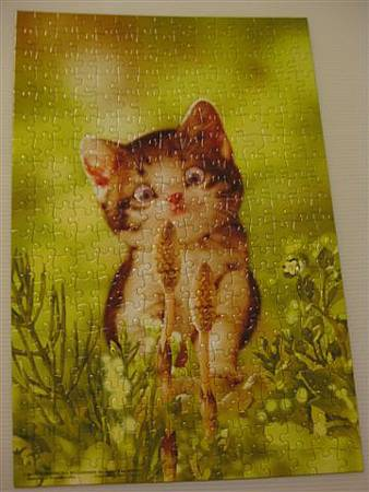 2013.07.05 300P 筆頭菜的魔力Cat's Favorite (1).JPG