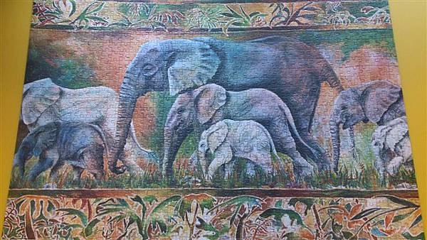 2013.08.03 1000PParade of Elephant (2).jpg