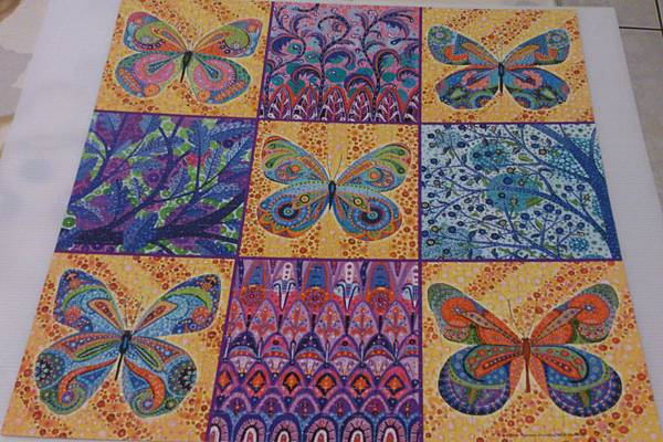 2013.09.10 500P Colorful Butterflies (1).jpg