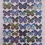 2013.10.15 100P Butterfly Mosaic (2).jpg