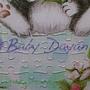 2013.11.26 108P Baby Dyan (3).jpg