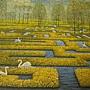2013.11.30 500P Spring Labyrinth (5).JPG