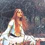 2014.04.30 40pcs The Lady of Shalott (3).jpg