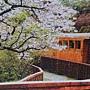 2014.06.18 1000pcs 阿里山小火車 (3).jpg