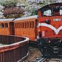 2014.06.18 1000pcs 阿里山小火車 (2).jpg