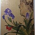 2013.09.09 300pcs 仙萼長春之虞美人蝴蝶蘭 (1).jpg