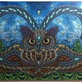 2014.10.18 338pcs Owl Eyes (5).jpg