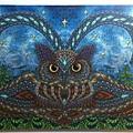 2014.10.18 338pcs Owl Eyes (6).jpg
