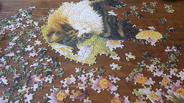 2014.12.06 500pcs Ivory cats puzzle.jpg