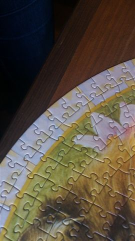 2014.12.06 500pcs Ivory cats puzzle (1).jpg