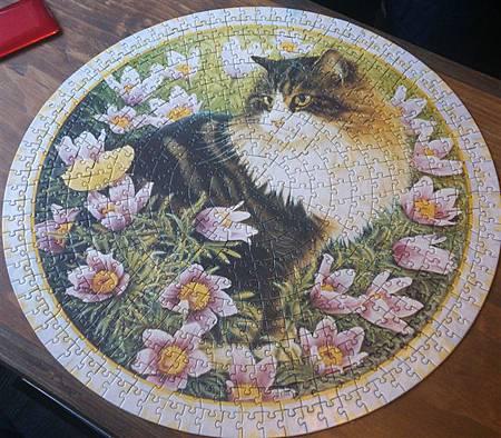 2014.12.06 500pcs Ivory cats puzzle (3).jpg