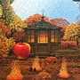 2014.12.09 924pcs Four Seasons (16).jpg